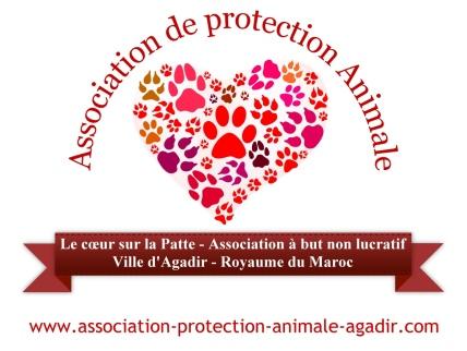 logo-association-protection-animale-agadir