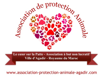 logo-association-protection-animale-agadir